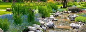 Quiet-Waters-Psy-of-Scottsdale-1200px